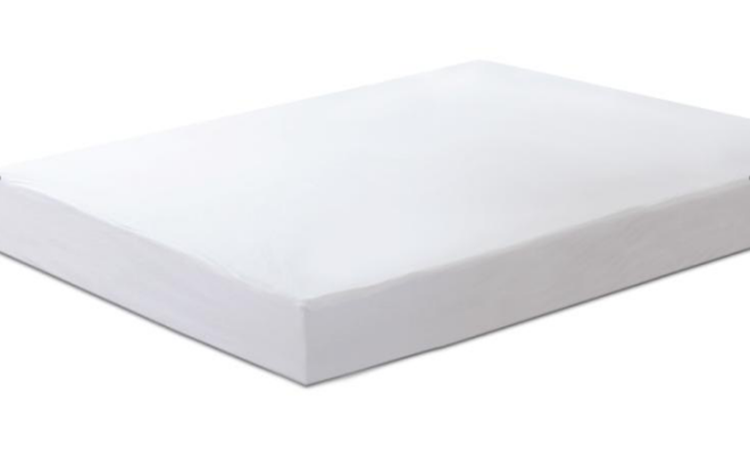 Basic Terry Mattress Protector